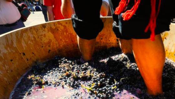 fetes-vendanges-rioja-logrono-vin-agence-de-voyage-erronda-vendimia-san-mateo