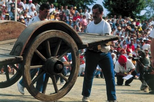 Force basque Pays basque charette