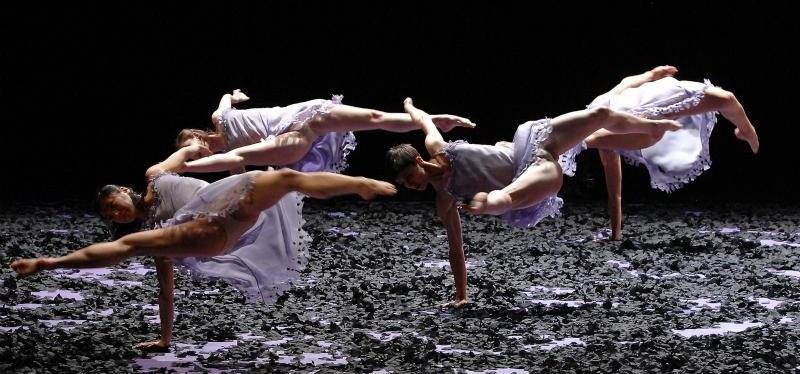 Malandin ballet biarritz pays basque