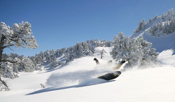 Séminaire hiver pyrénées Neige Snowboard Erronda