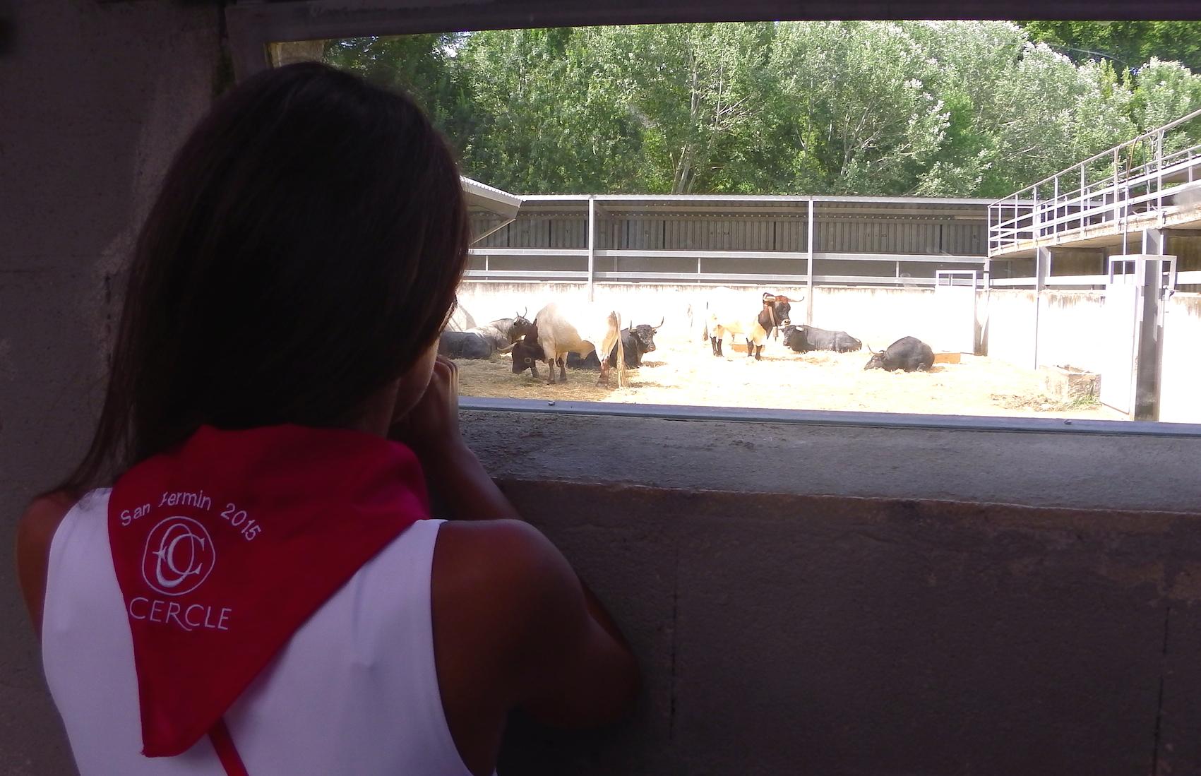 san-fermin-encierro-bullfigth-pampelune-agence-de-voyage-pays-basque-le-cercle-evenements2015--15