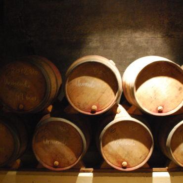 agence-voyage-rioja-logrono-oenotourisme-pays-basque-degustation-vin-bodega-evenementielle-erronda-