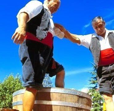 fetes vendanges rioja logrono vin Erronda evenements