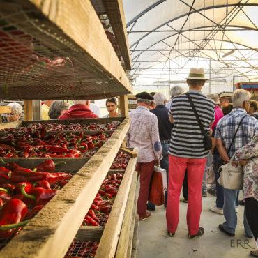 agence de voyage évènementielle pays basque sejour stay trip evasion saint jean de luz ascain ciboure artisans art producteurs piment espelette