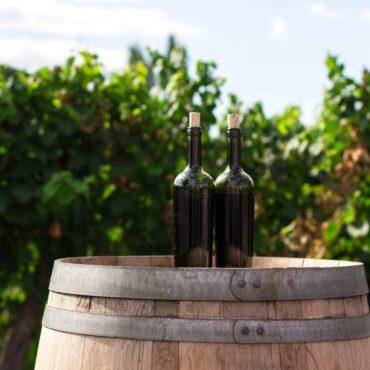 agence voyage pays basque country pais vasco sejour stay saint tour des vins crianza irouleguy rioja navarra cidre visite bodega haro logrono laguardia degustation